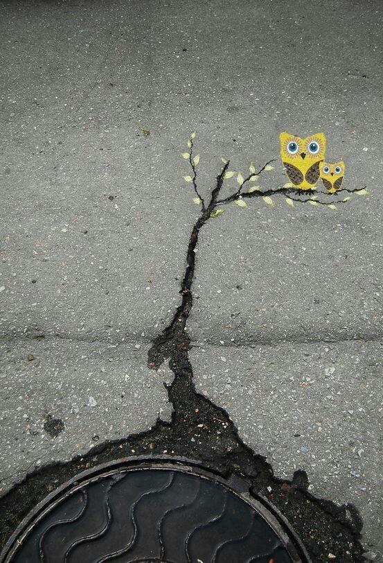 Asphalt Cracks as Tree Branches for Owls