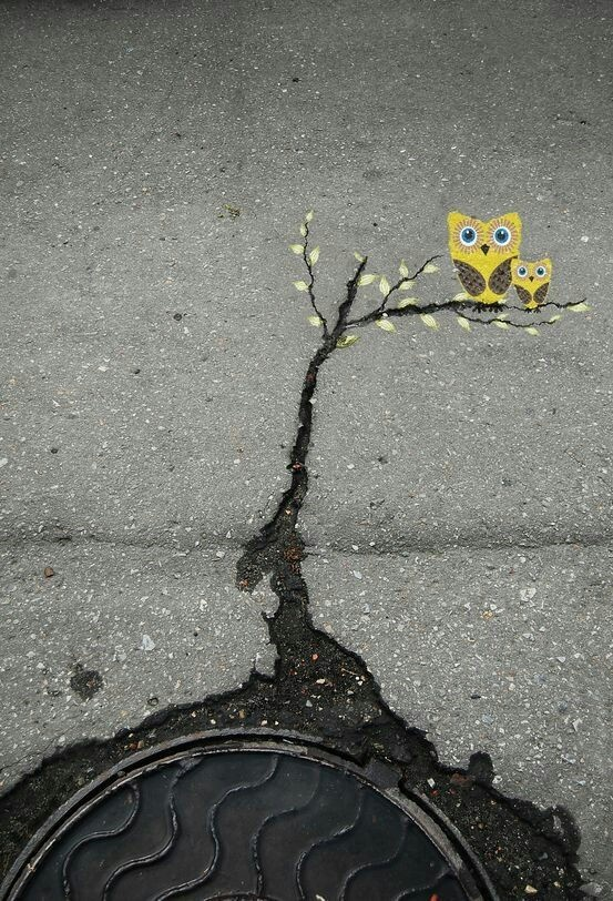 Asphalt Cracks as Tree Branches for Owls